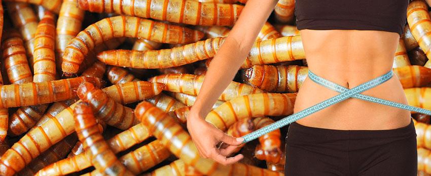 Таблетка червь для похудения фото